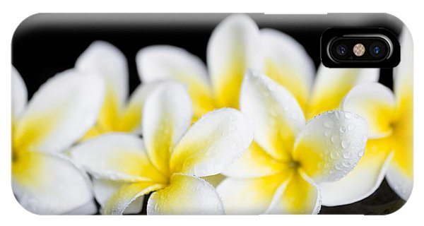 IPhone Case featuring the photograph Plumeria Obtusa Singapore White by Sharon Mau