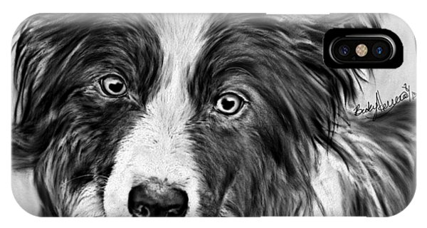 Border Collie Stare IPhone Case