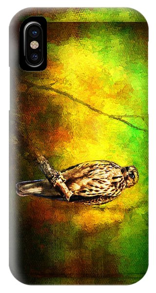 Hawk On Branch IPhone Case