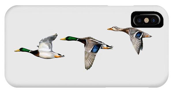 Mallard iPhone Case - Flying Mallards by Sarah Batalka