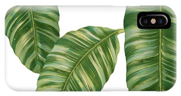 Leaf iPhone Case - Rainforest Resort - Tropical Banana Leaf  by Audrey Jeanne Roberts