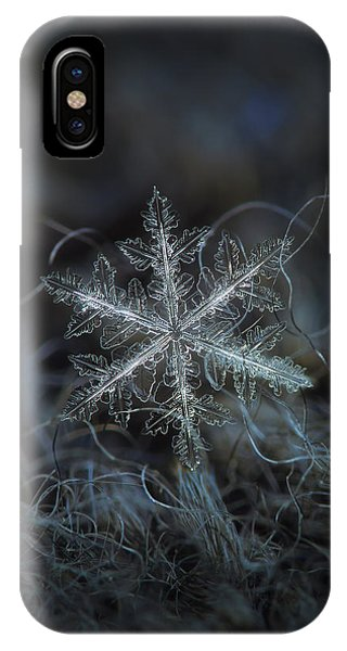 Leaves Of Ice, Panoramic Version IPhone Case