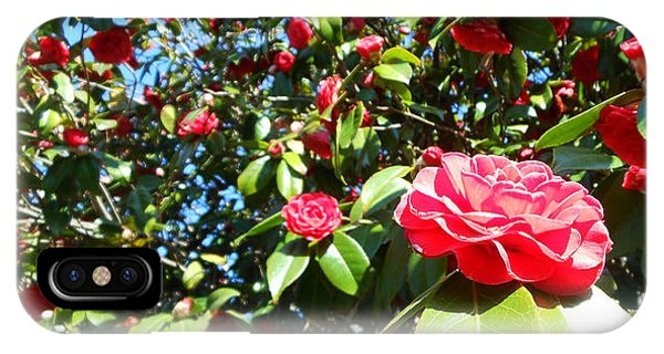 Uncommon Camellias IPhone Case