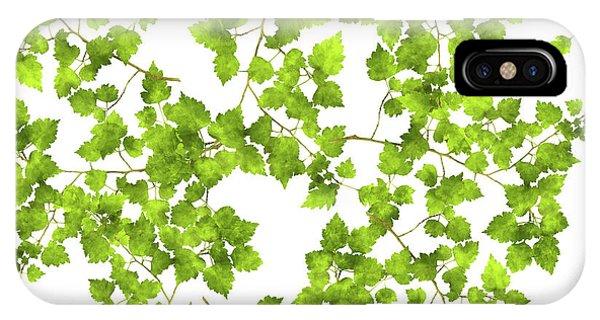 Hawthorn Pressed Leaf Art IPhone Case