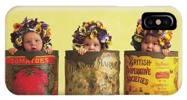 Day iPhone Case - Pansy Tins by Anne Geddes