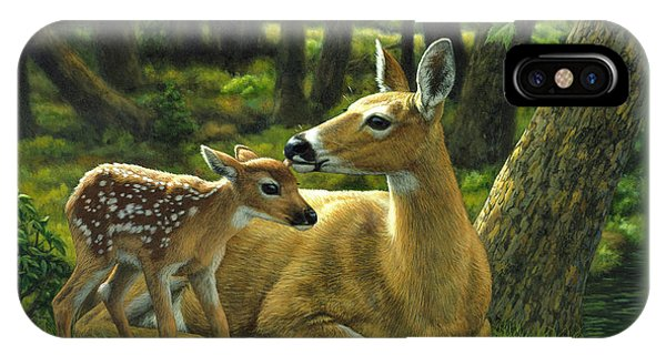 Deer iPhone Case - Whitetail Deer - First Spring by Crista Forest