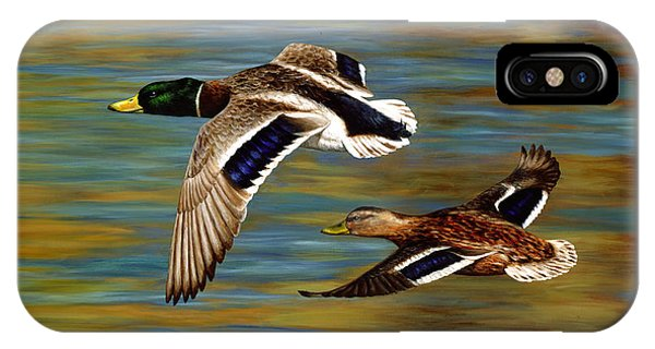 Duck iPhone Case - Golden Pond by Crista Forest