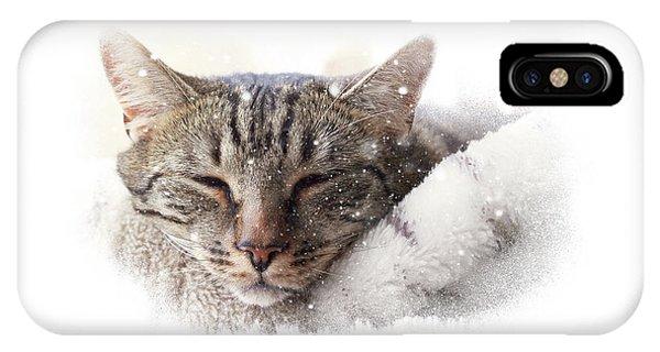 Cat And Snow IPhone Case