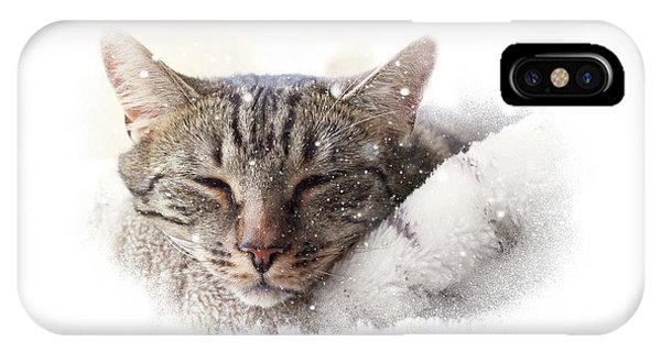 Cat And Snow IPhone Case