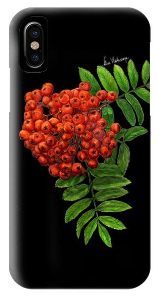 Oranger iPhone Case - Bunch Of Rowanberries by Alina Vlastovskaya