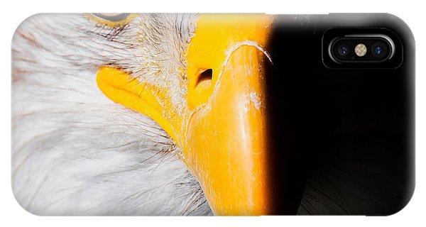 Bald Eagle In Focus IPhone Case