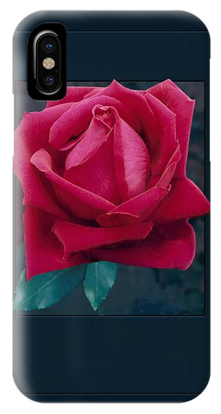 iPhone Case - Rose Of Many Colors by Cynthia Leaphart