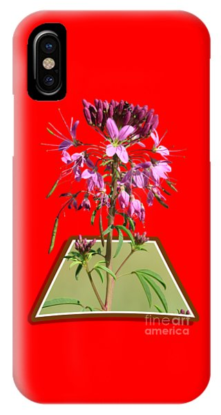 Rocky Mountain Bee Plant IPhone Case
