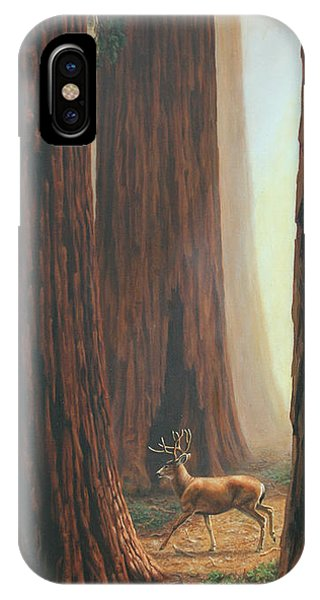 Mule Deer iPhone Case - Sequoia Trees - Among The Giants by Crista Forest