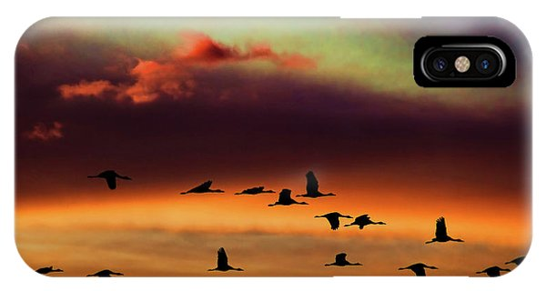 Sandhill Cranes Take The Sunset Flight IPhone Case