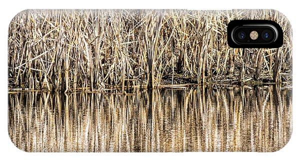 Golden Reed Reflection IPhone Case