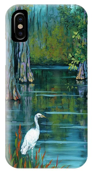 Heron iPhone Case - The Fisherman by Dianne Parks