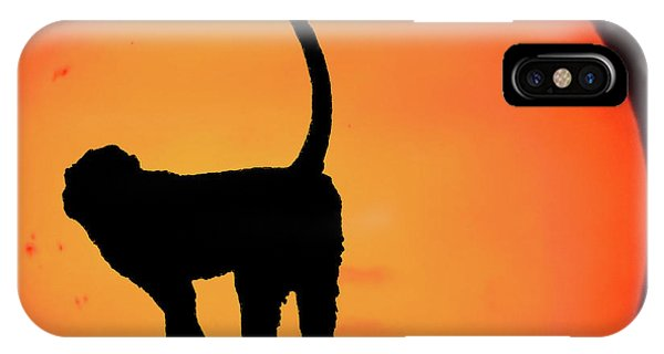 As The Day Ends IPhone Case