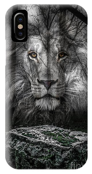 Aslan And The Stone Table IPhone Case