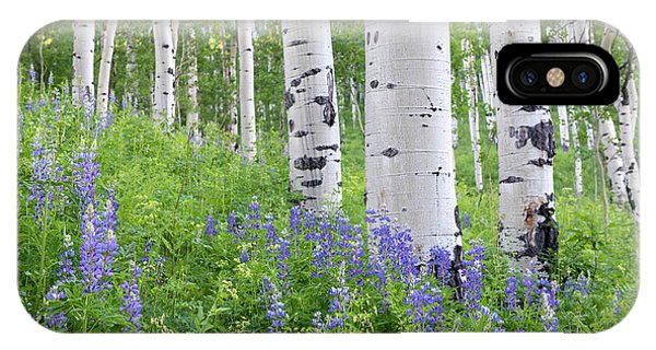Aspen And Lupine IPhone Case