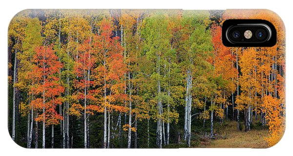 Aspen Color IPhone Case