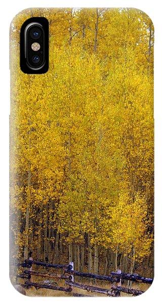 Aspen Fall 2 IPhone Case