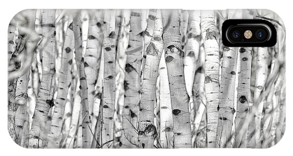 Aspen Forest Iv IPhone Case