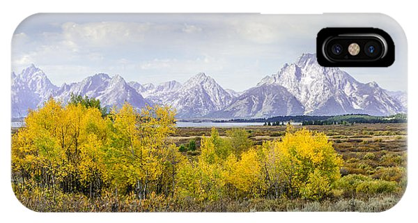 Aspen Gold In The Tetons IPhone Case