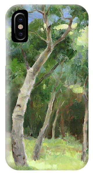Rocky Mountain iPhone Case - Aspen Grove I by Anna Rose Bain