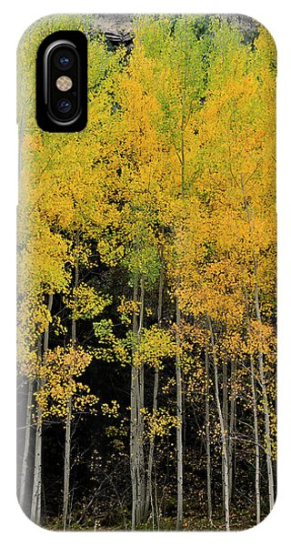 IPhone Case featuring the photograph Aspen Haven  by Ron Cline