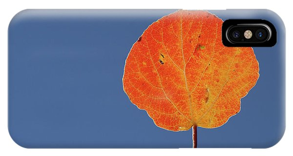Aspen Leaf 1 IPhone Case