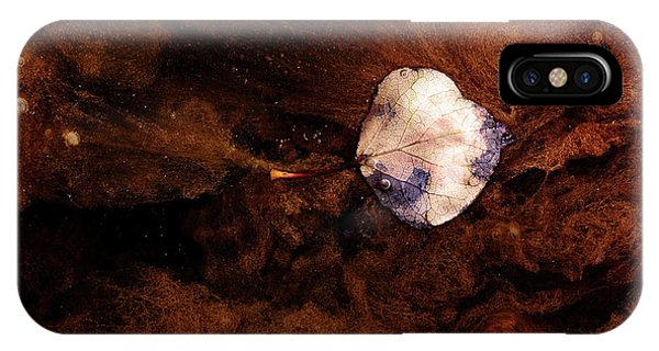 Aspen Leaf In Mud Wash IPhone Case