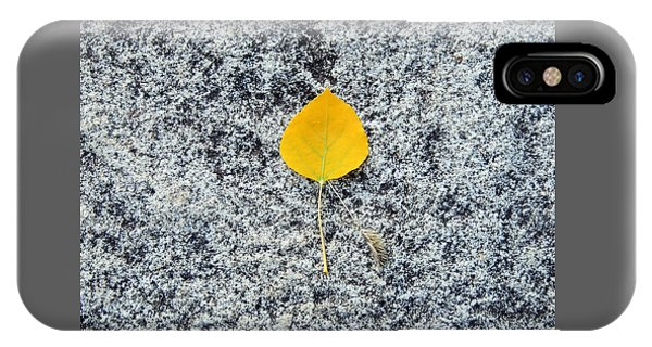 Aspen Leaf On Stone IPhone Case