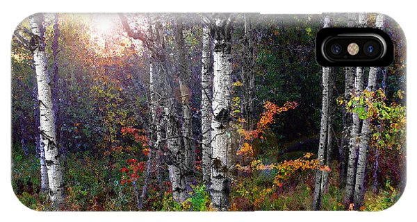 IPhone Case featuring the photograph Aspen Morning by Wayne King