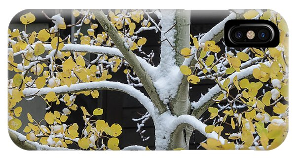 Aspen Snow IPhone Case