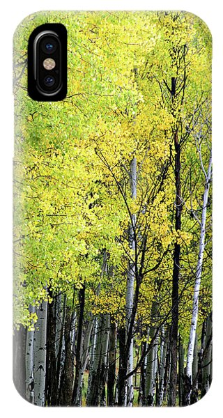 Aspen Splendor IPhone Case