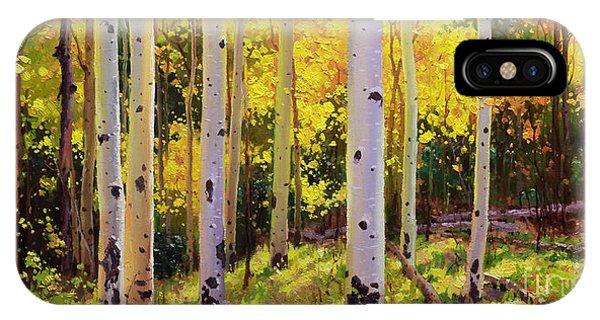 Rocky Mountain iPhone Case - Aspen Symphony by Gary Kim