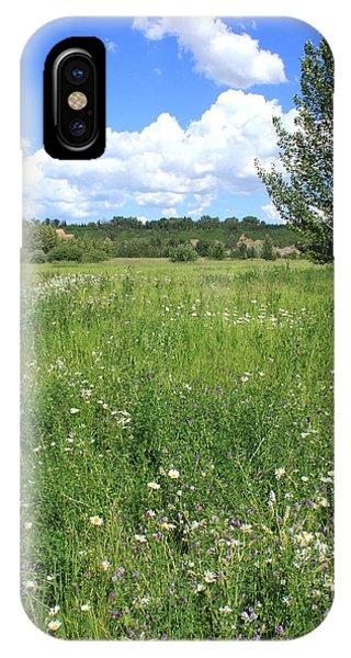 Aspen Tree In Meadow With Wild Flowers IPhone Case