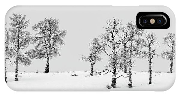 IPhone Case featuring the photograph Aspen Tree Line-up by Denise Bush