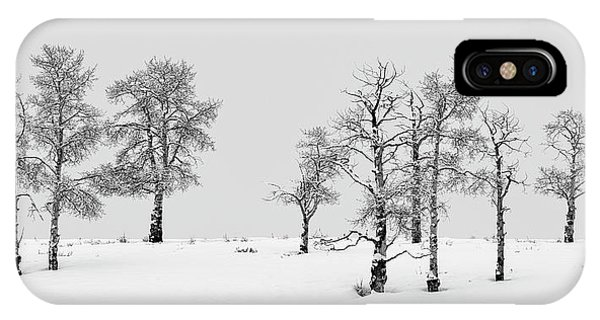 Aspen Tree Line-up IPhone Case