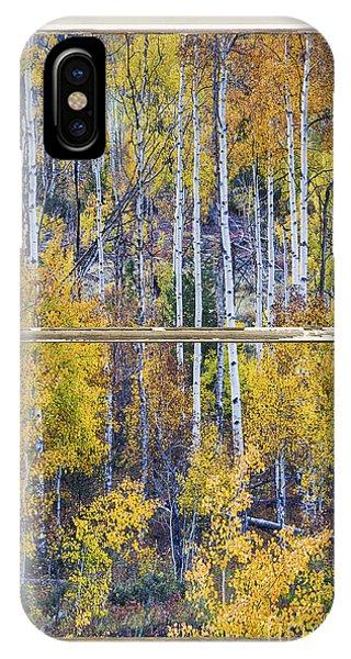 Aspen Tree Magic Cottonwood Pass White Farm House Window Art IPhone Case