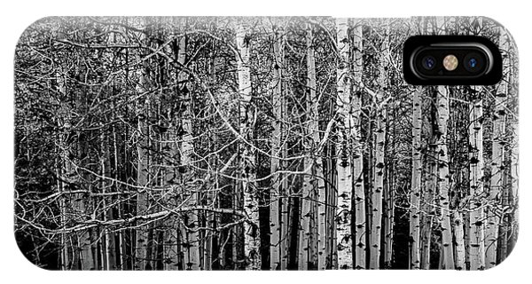 Aspen Trees Canadian Rockies Black And White IPhone Case