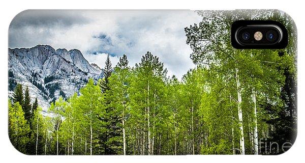 Aspen Trees Canadian Rockies IPhone Case