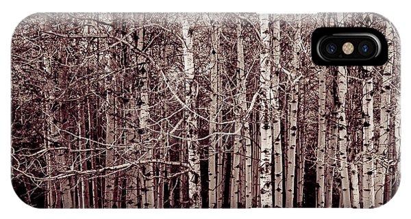 Aspen Trees Canadian Rockies Duo Tone IPhone Case