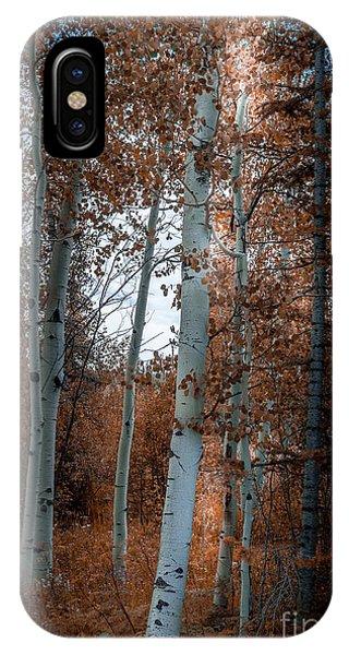 Aspen Trees Ryan Park Wyoming IPhone Case