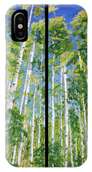 Aspen Twin Perspectives IPhone Case