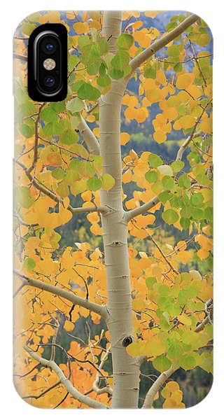 Aspen Watching You IPhone Case