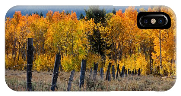 Aspens And Fence IPhone Case