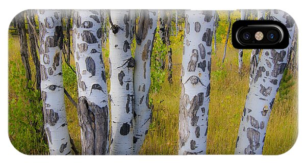 IPhone Case featuring the photograph Aspens by Gary Lengyel