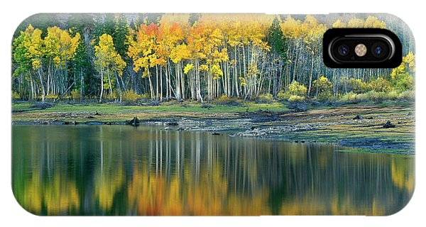 Aspens In Fall Color Along Lundy Lake Eastern Sierras California IPhone Case